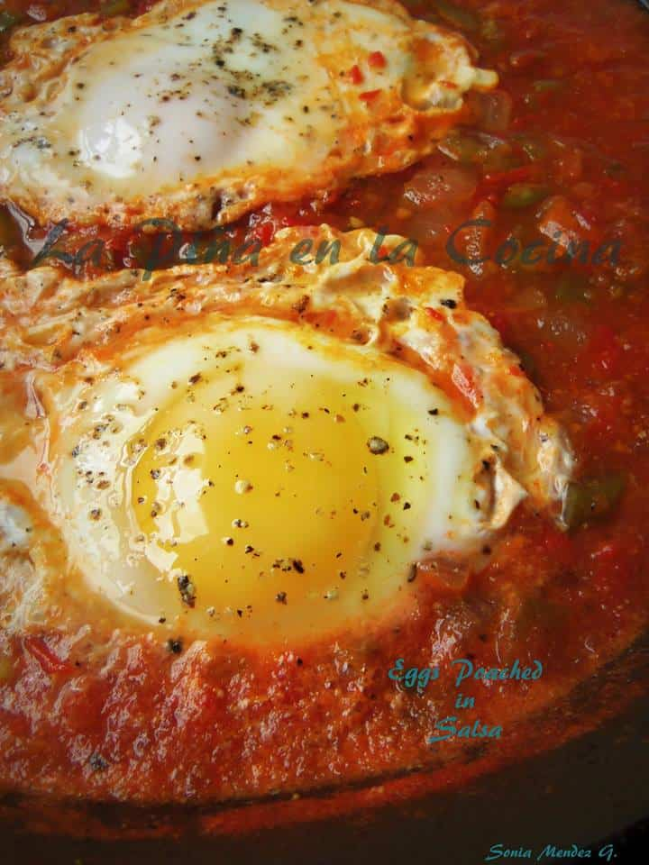 Poached Eggs in Salsa