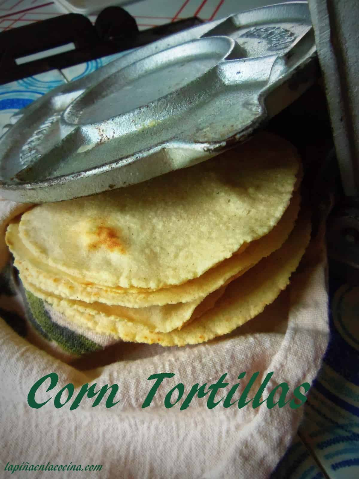 Corn Tortillas Made with Masa Harina