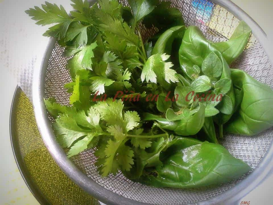 Freash herbs from my garden. Basil, parsley, cilantro and oregano