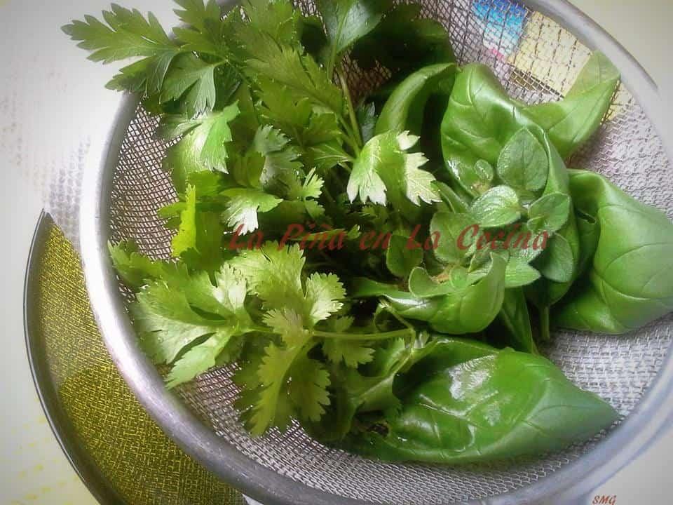 Freash herbs from my garden. Basil, parsley, cilantro and oregano