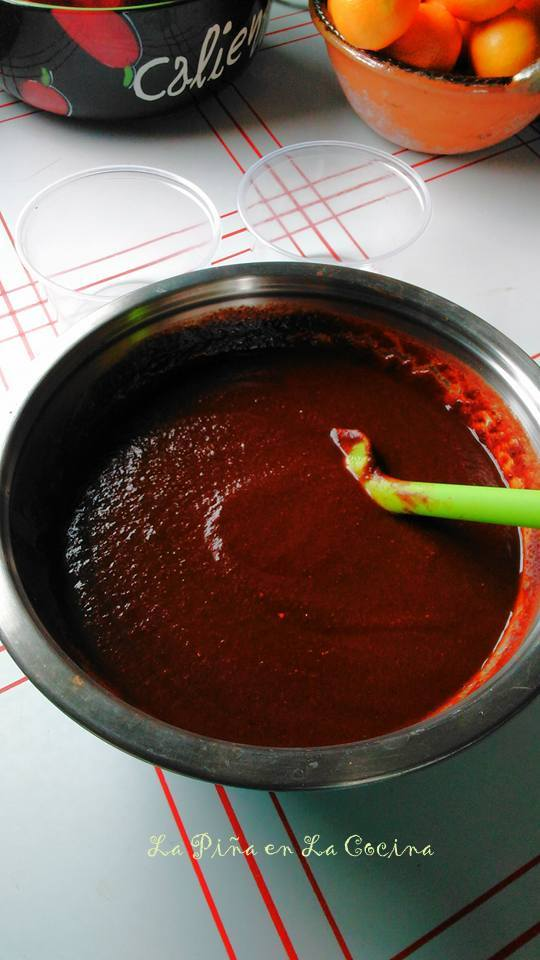 Chile Ancho Sauce For Tamales and All Of Your Favorite Mexican Dishes