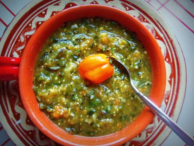 Blackened Tomatillo Habanero Poblano Salsa