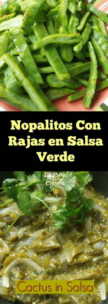 Photo for Pinterest of Nopalitos