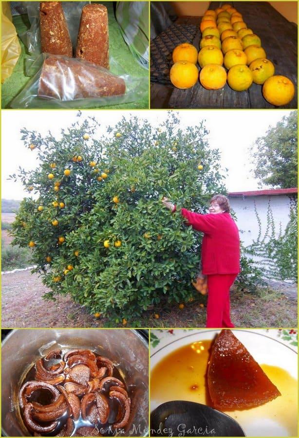 Conserva de Naranja-Tia Minerva, Mexico