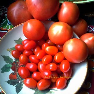 You Say Tomato….I Say Tomate! Three Fresh Tomato Recipes