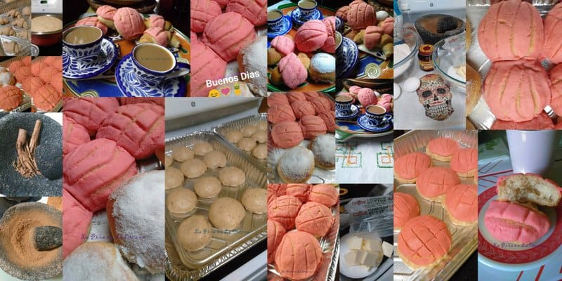 Conchas-Mexican Pan de Dulce collage of pink conchas!