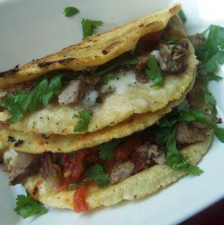 Tacos al Carbon or Carne Asada? We Love Mexican Tacos!