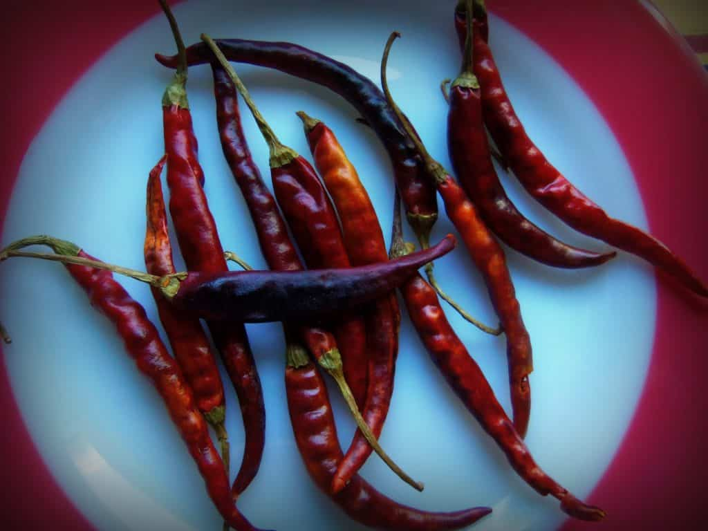 Toasted Chile de Arbol