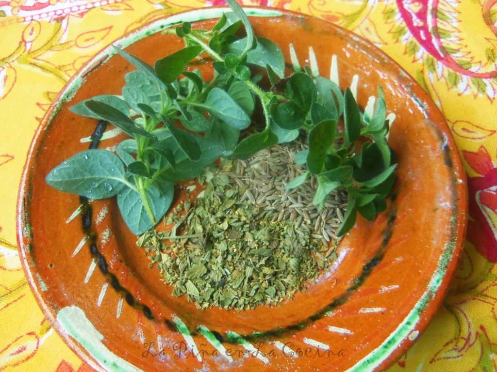 Fresh and Dried Herbs_Chicken Chile Verde