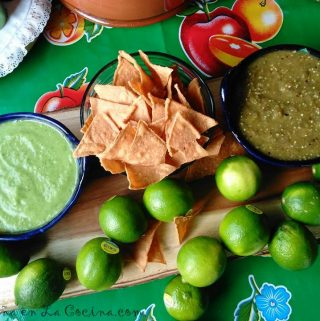 Tomatillo Salsa Recipes