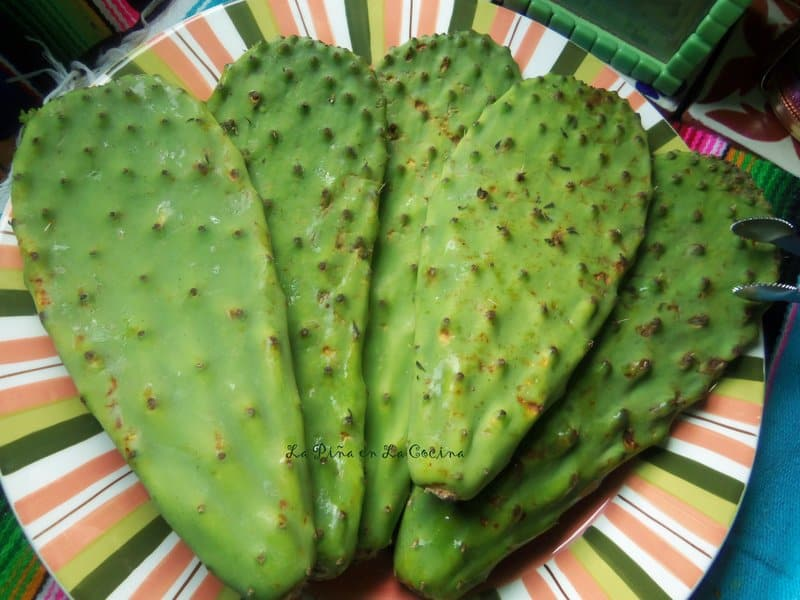 Nopales Before Cleaning, Cactus Paddles