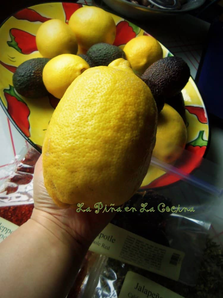 Holding over sized lemon