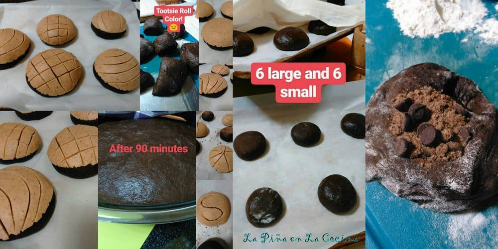 Conchas Dark Chocolate