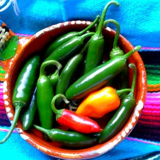 Salsa Recipes For Spicy Food Lovers!