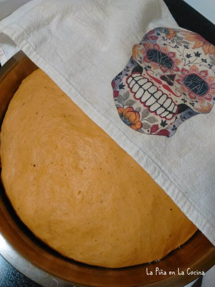 Dough after the first proof
