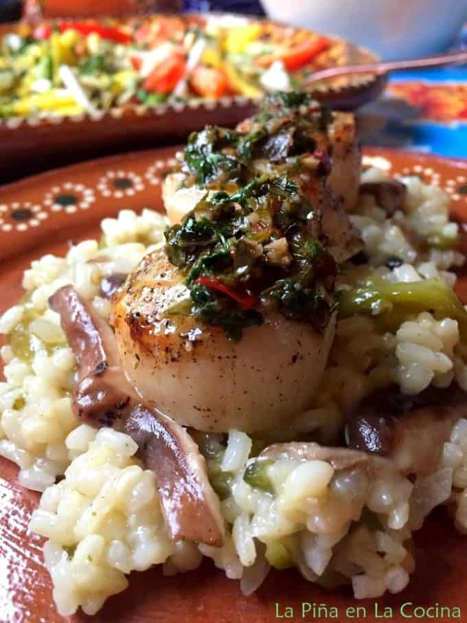 Scallops garnished with chimichurri sauce over risotto