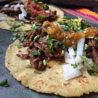 Barbacoa taco close up
