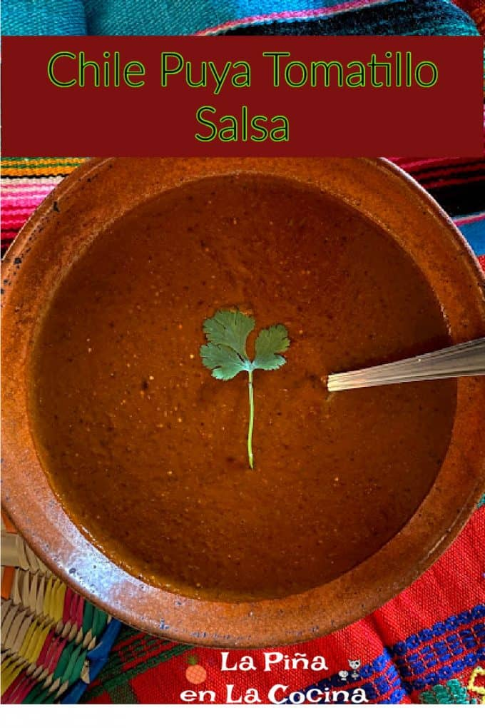 Pinterest image for chile puya tomatillo salsa with header