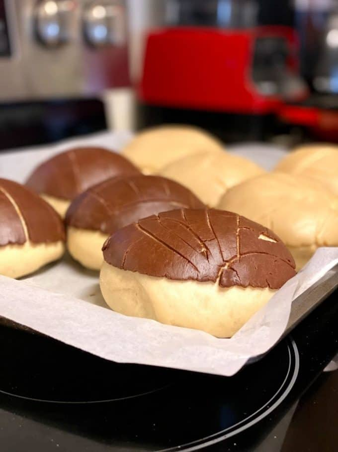 unbaked conchas after they have proofed for one hour, ready to be baked